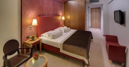 Dvokrevetna soba, classic, morska strana, balkon s francuskim lezajem sa polupansionom